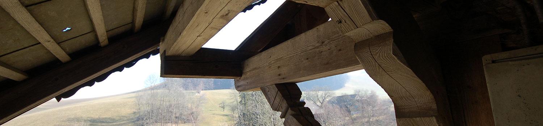 dubach plant ag – der ideale Partner für Restaurationen historische Bauten